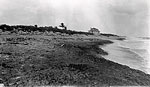 Coquina Outcrop on Shore at Boca Raton, 1927