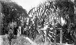 Group Posed on Water Wheel, De Leon Springs, 18--