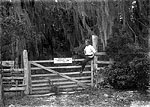 Everett Jones Sitting on Gate to Leigh M. Pearsall's Property, Melrose, 1907